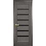 Межкомнатная дверь Линнея с черным стеклом  ПВХ Deluxe